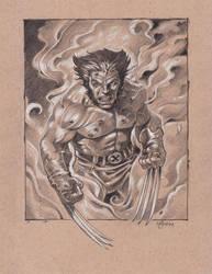 Wolverine Sketch by NathanRosario