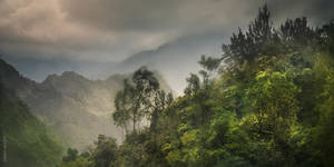 Cilaos Road -3- (Reunion island) by OlivierAccart