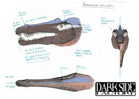 Baryonyx Model Sheet - Head by Kronosaurus82