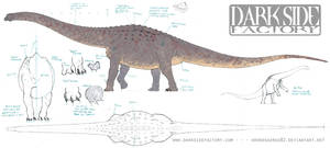 Argentinosaurus Model Sheet 1 by Kronosaurus82