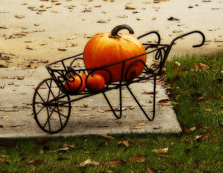 Pumpkin Barrow by rodwilliams