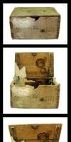 Labyrinth box 2 by zeldaricdeau