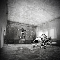 Weird Fishes by navidsanati