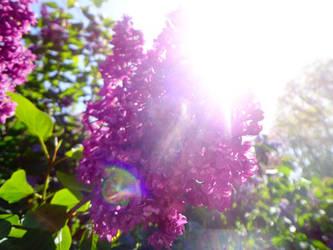 FLOWER#6-1 by yelyahlover
