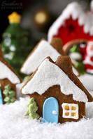Gingerbread house cookies by kupenska