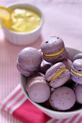 Lavender lemon macarons by kupenska
