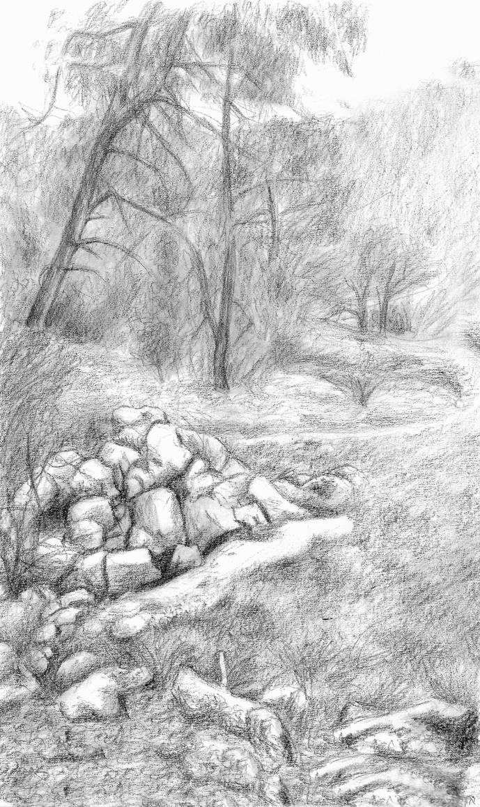 coarsegold landscape by dofaust