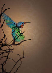 HummingBird by jameshburnell