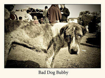 Bad Dog Bubby by HappyMartin
