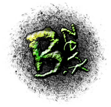 B. ZerK logo by TheMercFCS