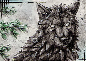 ACEO-CheliEvolle by Cally-Dream