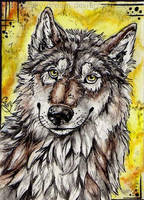 ACEO-for Fan by Cally-Dream