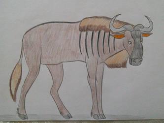 Animal Arts - Wildebeest by EddyBite87