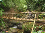 Wooded Bridge in Costa Rica by camias