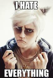 Grumpy Cat: I HATE EVERYTHING by WiseKumagoro
