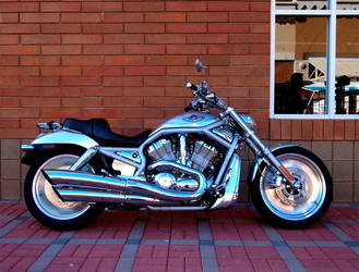 Harley Davidson V-Rod by Swanee3