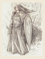 Shield Maiden of Avalon by EAHowell
