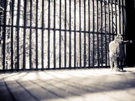 prison? by piorun