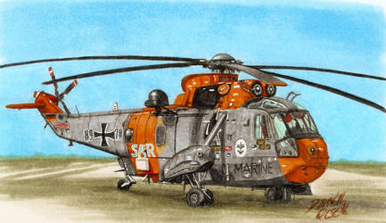 Westland Sea King Mk. 41 German Navy SAR by nessi6688