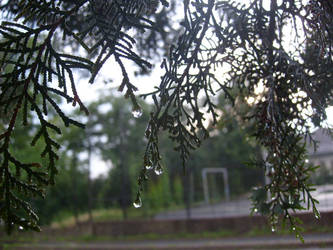Drops of water by imi51