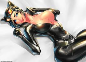 Catwoman-FANART- by xdtopsu01