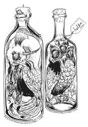 Birds in Bottles by addisonwoolworth