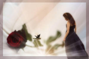 A Special Rose by Lauraest