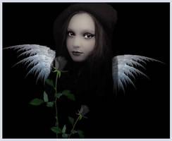 Dark Angel by Lauraest