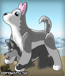 hotrod Wolf and loving husky by hotrodwolf