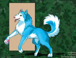 Blue Husky by blayrd