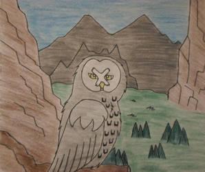 Great Gray Owl by NikitaFang