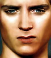 Elijah Wood II by danniellah