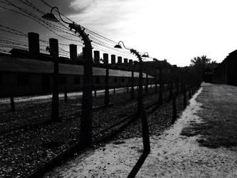 Auchwitz-Birkenau by anushkacz