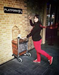 Route to Hogwarts by anushkacz