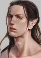 Face Study by Archie-The-RedCat