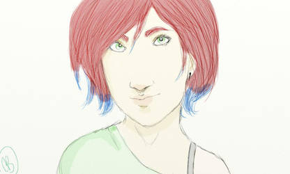 Florence by Nebue