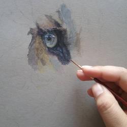 Tiger wip #1 (gouache painting) by SiriuslyArt