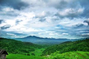 Landscape by dmsapr