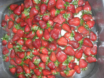 5 Lbs of Berries by amalthea