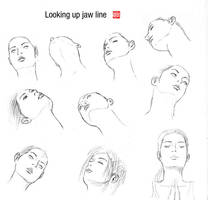 Looking up jaw line by randychen
