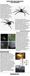 Spider Silk by nicholasrwilson2