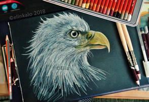 Eagle by elinkalo