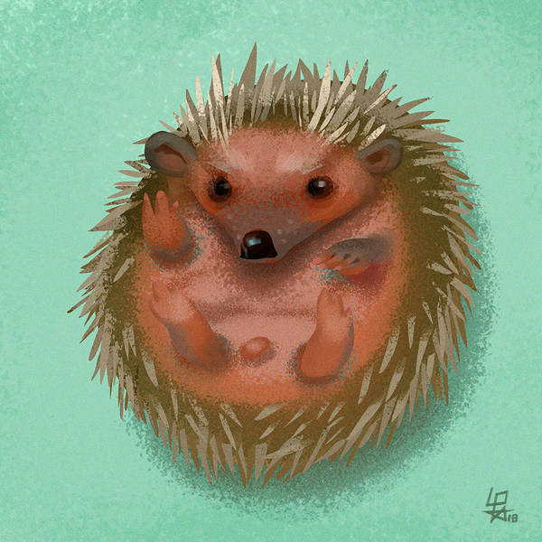 Hedgehog by cloudintrousers