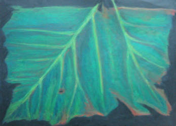 Double Leaf - crayon by caligreal