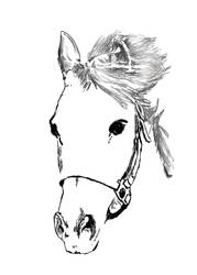 Horsestock5-1 WIP by caligreal