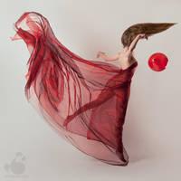 Gravity Circus by armene