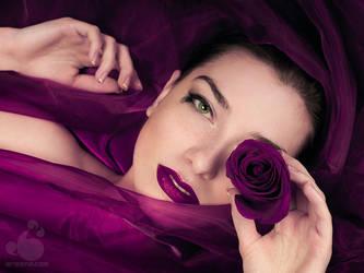 Magic Purple by armene