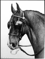Horse Hackney by Twist-Again