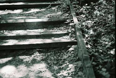 paths of least resistance by nikku-neko