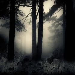 Primordial Forest by BranislavFabijanic